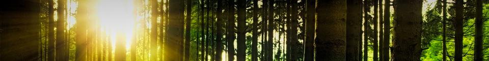 全国林野関連労働組合